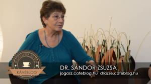 Dr. Sándor Zsuzsa blogjai