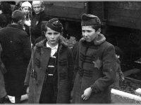 A magyar akció Auschwitz-Birkenauban